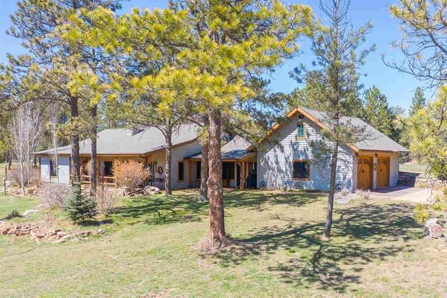 11986 Lone Elk Drive, Hot Springs, SD 57747 (MLS #67953) :: Christians Team Real Estate, Inc.
