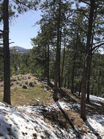 TBD Tetro Rock Road, Deadwood, SD 57732 (MLS #68099) :: Black Hills SD Realty