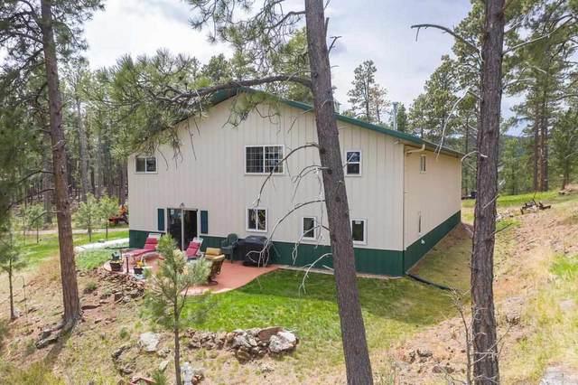 13550 Highway 40, Keystone, SD 57751 (MLS #68169) :: Dupont Real Estate Inc.