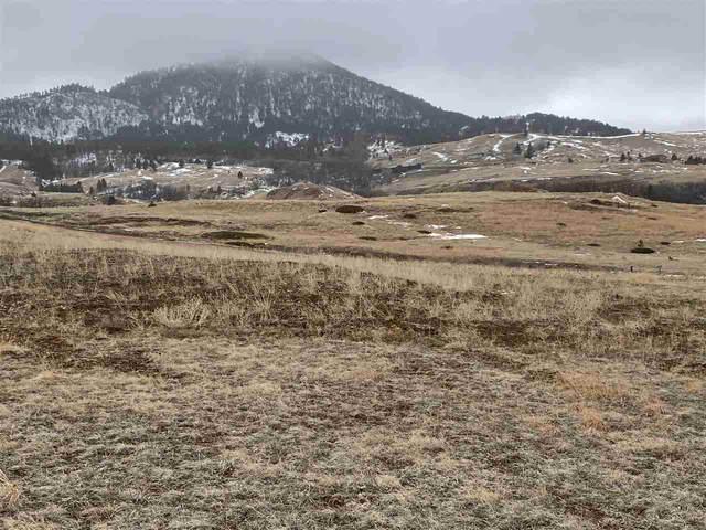 lot 3 Highway 585, Sundance, WY 82729 (MLS #68176) :: Daneen Jacquot Kulmala & Steve Kulmala