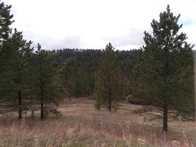 TBD Last Chance Trail, Lead, SD 57754 (MLS #68209) :: Christians Team Real Estate, Inc.