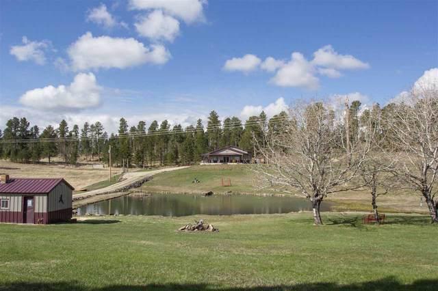21652 Hay Creek Road, NEMO, SD 57759 (MLS #68240) :: Dupont Real Estate Inc.