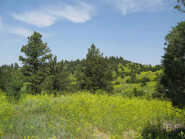 TBD Oil Butte Circle, MOORCROFT, WY 82721 (MLS #68275) :: Black Hills SD Realty