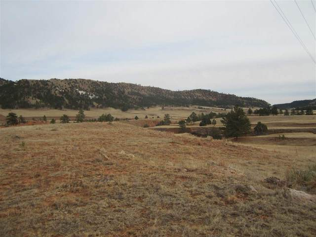 Lot 3A Sheps Canyon Road, Hot Springs, SD 57747 (MLS #68282) :: Black Hills SD Realty