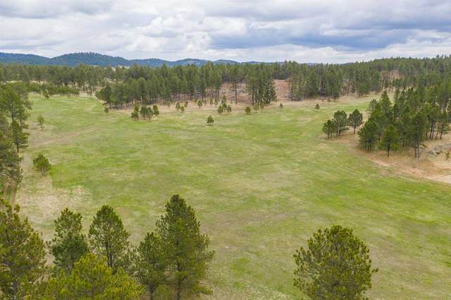 TBD HES#531 Address Not Published, Custer, SD 57730 (MLS #68311) :: Black Hills SD Realty