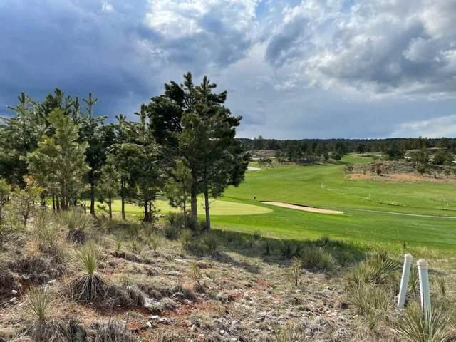 TBD - Lot GC99 Falcon Drive, Hot Springs, SD 57747 (MLS #68314) :: Dupont Real Estate Inc.