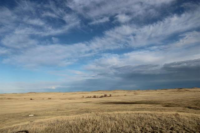 17600 Kentucky Place, Mud Butte, SD 57783 (MLS #68316) :: Dupont Real Estate Inc.