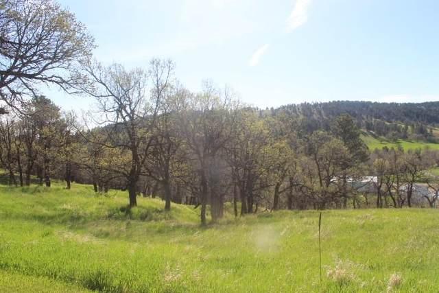 LOT 8 Blue Ridge Loop, Whitewood, SD 57793 (MLS #68350) :: Dupont Real Estate Inc.