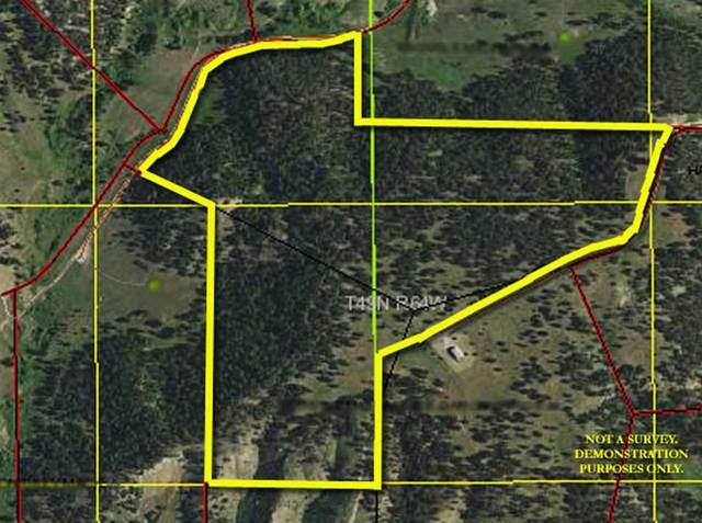 TBD Two Pipe Trail, Sundance, WY 82729 (MLS #68369) :: VIP Properties