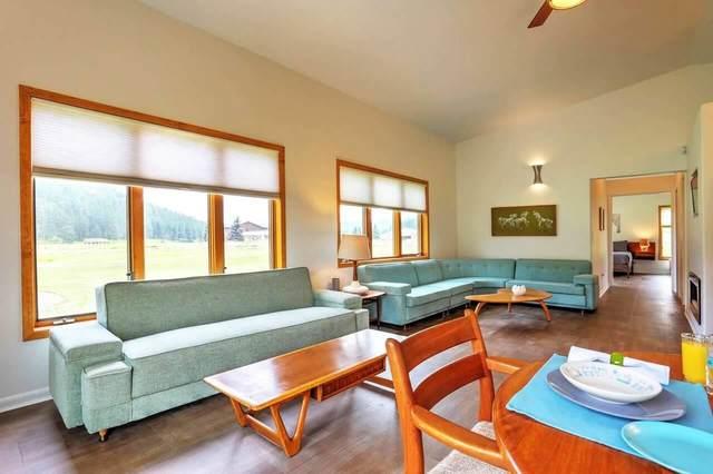 12730 Nemo Road, NEMO, SD 57759 (MLS #68393) :: Dupont Real Estate Inc.