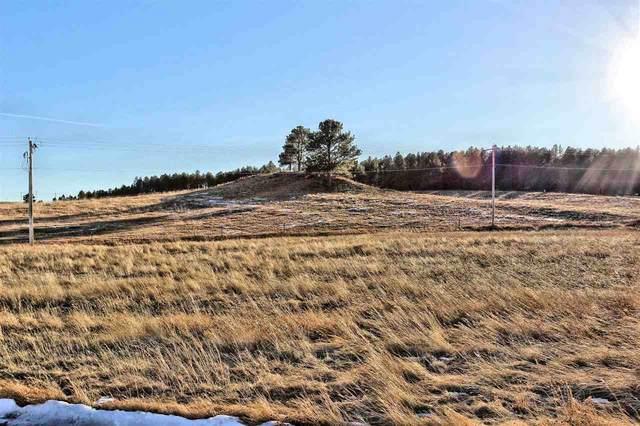 Lot 17 Sidney Park Road, Custer, SD 57730 (MLS #68416) :: Dupont Real Estate Inc.
