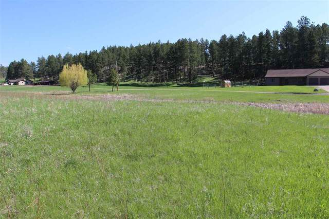 TBD Golden Willow Parkway, Custer, SD 57730 (MLS #68417) :: Dupont Real Estate Inc.