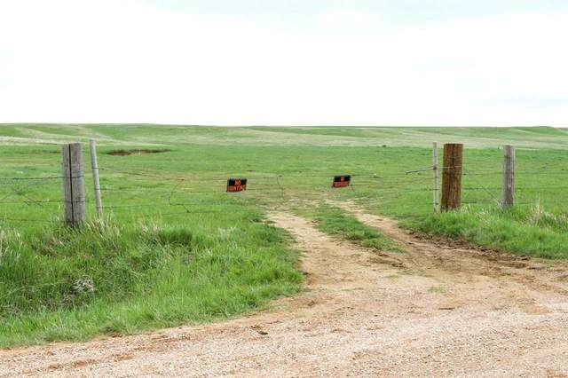 TBD Maitland Road, Oelrichs, SD 57763 (MLS #68419) :: Dupont Real Estate Inc.