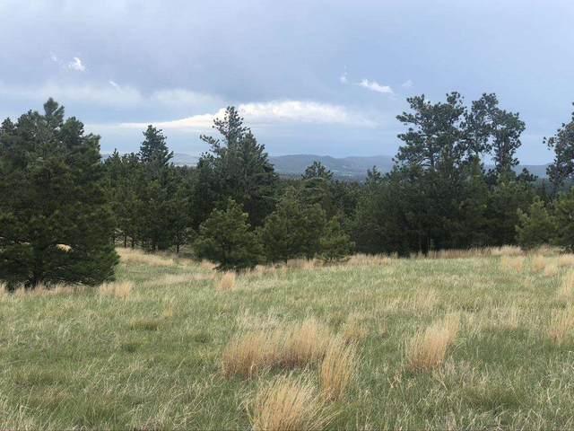 Lot 9 Remington Road, Custer, SD 57730 (MLS #68468) :: Dupont Real Estate Inc.