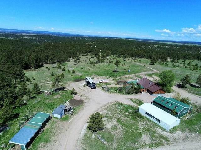 11898 Ridge Road, Hot Springs, SD 57747 (MLS #68542) :: Daneen Jacquot Kulmala & Steve Kulmala