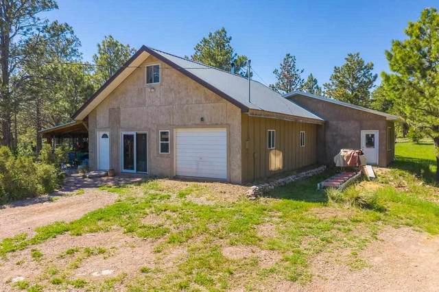 27767 Forest Road, Hot Springs, SD 57747 (MLS #68567) :: Daneen Jacquot Kulmala & Steve Kulmala