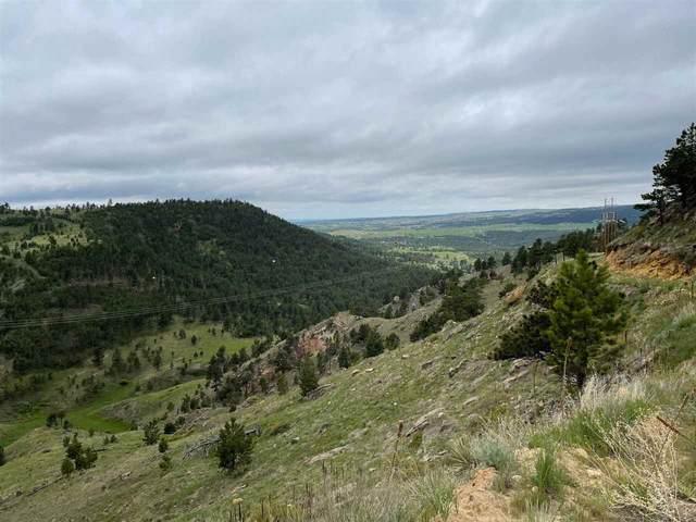 27622 Brook Drive, Hot Springs, SD 57747 (MLS #68582) :: Black Hills SD Realty