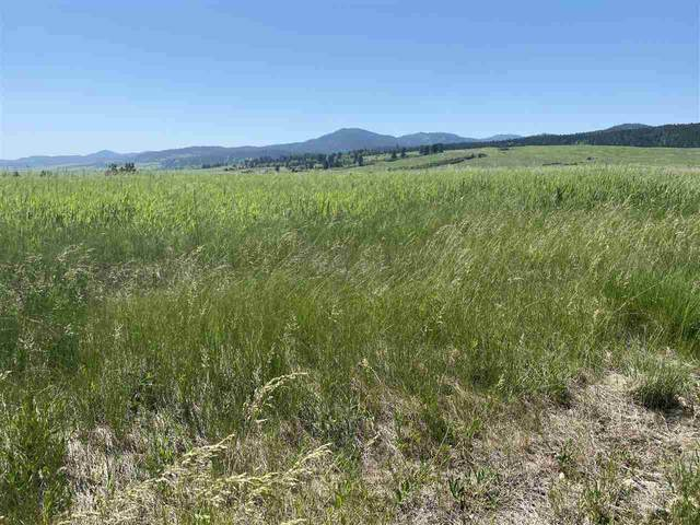 TBD Maitland Road, Spearfish, SD 57783 (MLS #68603) :: Dupont Real Estate Inc.