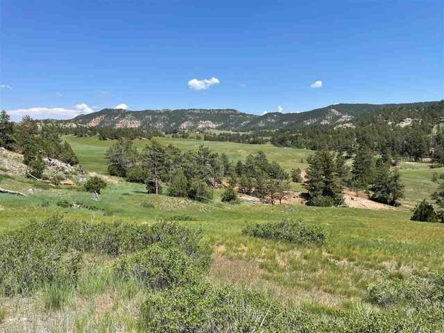 Red Canyon Road, Pringle, SD 57773 (MLS #68607) :: Dupont Real Estate Inc.