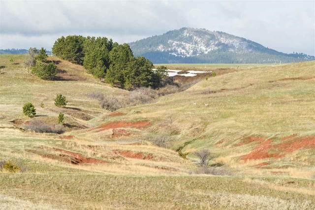 6025 E Colorado Boulevard, Spearfish, SD 57783 (MLS #68626) :: Dupont Real Estate Inc.