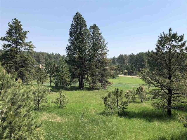 121 Trails End Court, Custer, SD 57730 (MLS #68731) :: Dupont Real Estate Inc.