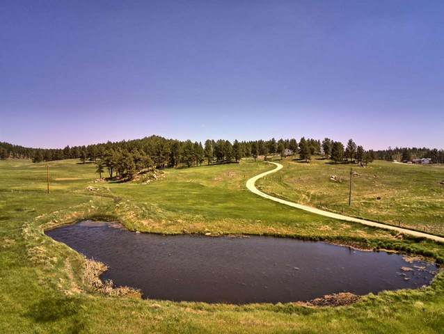 Lot 4 TBD Pleasant Valley Road, Custer, SD 57730 (MLS #68743) :: Dupont Real Estate Inc.