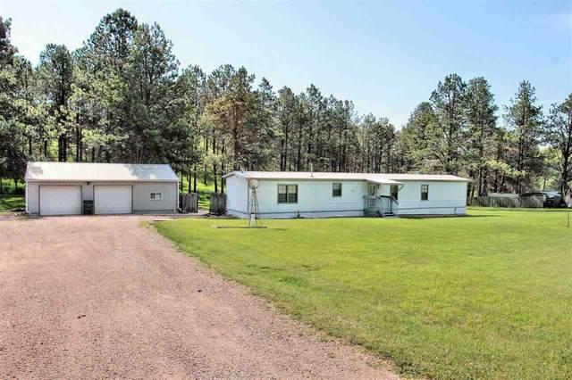 25350 Deer Meadow Road, Custer, SD 57730 (MLS #68747) :: Dupont Real Estate Inc.