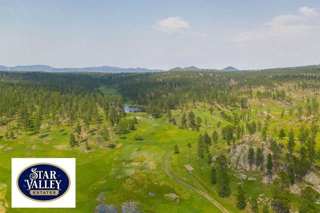 Lot 18 Other, Custer, SD 57730 (MLS #68777) :: Black Hills SD Realty