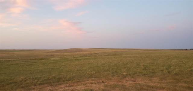 Address Not Published, Sturgis, SD 57785 (MLS #68789) :: Black Hills SD Realty