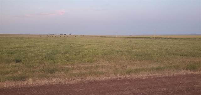 Address Not Published, Sturgis, SD 57785 (MLS #68792) :: Black Hills SD Realty