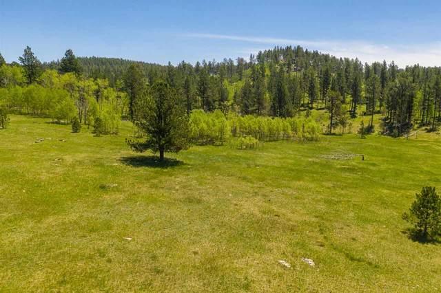 LOT 8 Elliot Road, Custer, SD 57730 (MLS #68812) :: Black Hills SD Realty