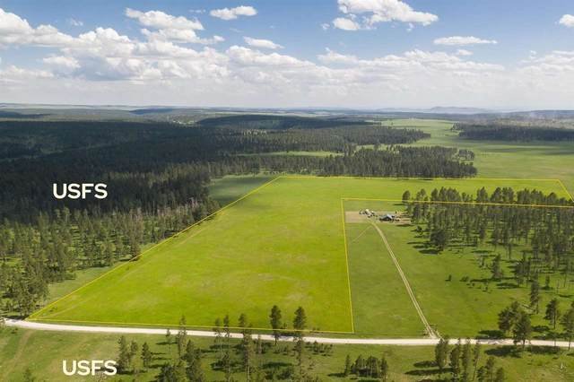 10285 Six Mile Road, Hill City, SD 57744 (MLS #68825) :: Black Hills SD Realty