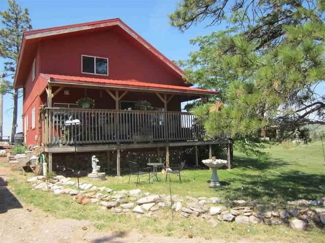 12523 Black Hills Flyway Road, Hot Springs, SD 57747 (MLS #68968) :: Christians Team Real Estate, Inc.