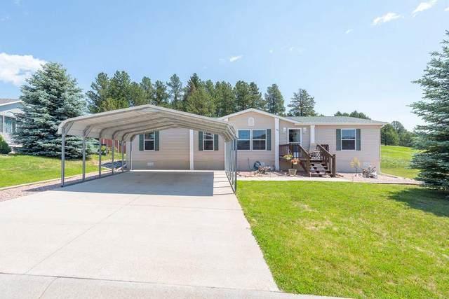 180 Shooting Star Lane, Custer, SD 57730 (MLS #69033) :: Dupont Real Estate Inc.