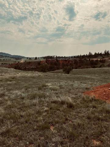 Lot 18 Address Not Published, Hot Springs, SD 57747 (MLS #69131) :: Christians Team Real Estate, Inc.