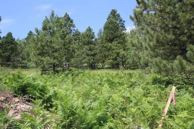 LOT 14 Mystery Wagon Road, Deadwood, SD 57732 (MLS #69193) :: Daneen Jacquot Kulmala & Steve Kulmala
