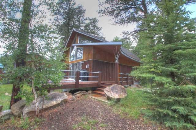 11011 Buffalo Trail, Lead, SD 57754 (MLS #69205) :: Christians Team Real Estate, Inc.