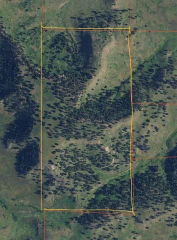 TBD Elk Run Road, Belle Fourche, SD 57717 (MLS #69208) :: Daneen Jacquot Kulmala & Steve Kulmala