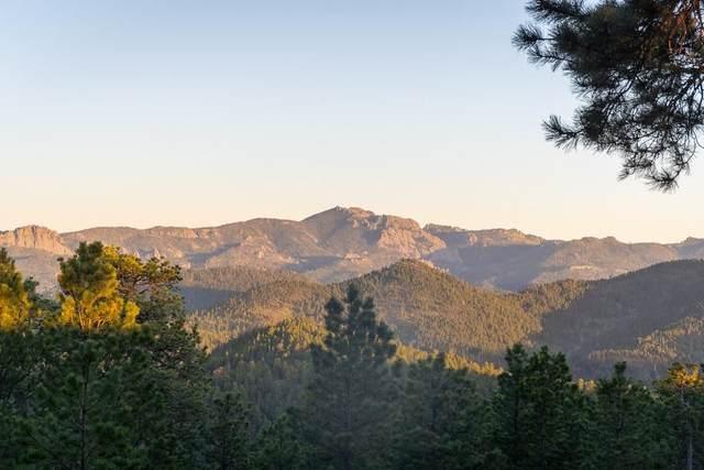 23843 Deegan Drive, Hill City, SD 57745 (MLS #69222) :: Black Hills SD Realty