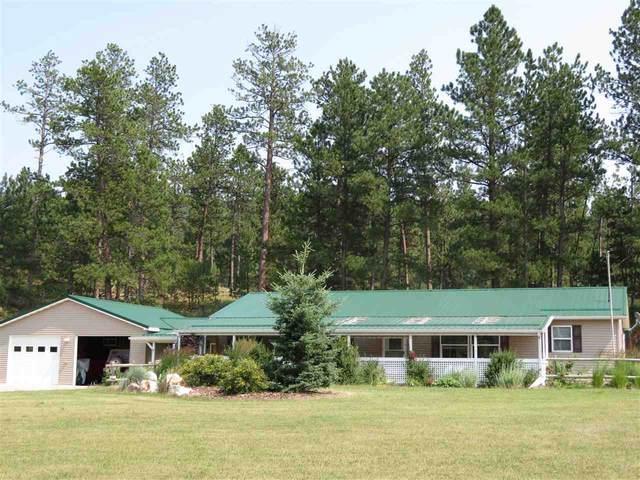 24136 Deadbroke Road, Hill City, SD 57745 (MLS #69278) :: VIP Properties