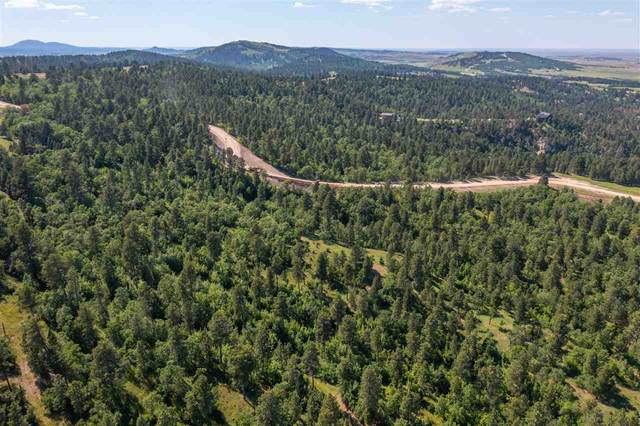 tbd lot 4 Other, Whitewood, SD 57793 (MLS #69283) :: VIP Properties