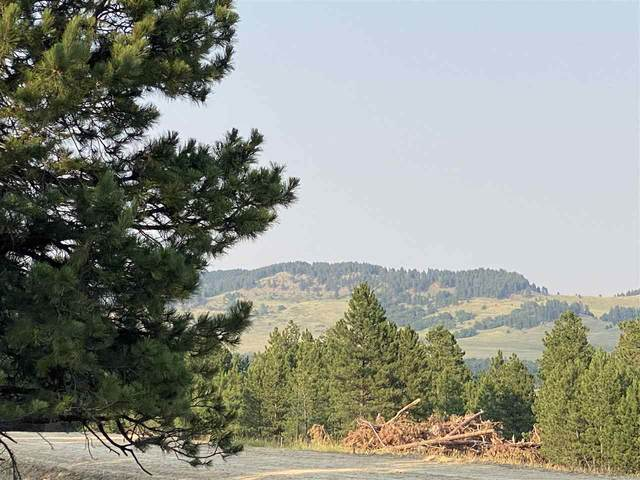 tbd lot 6 Other, Whitewood, SD 57793 (MLS #69284) :: VIP Properties