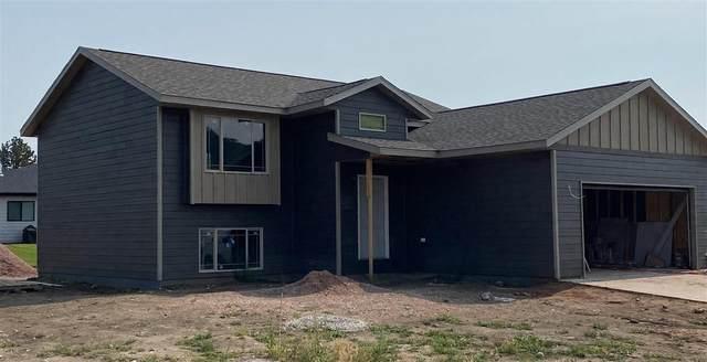 1065 Quinn Drive, Hill City, SD 57745 (MLS #69357) :: Black Hills SD Realty