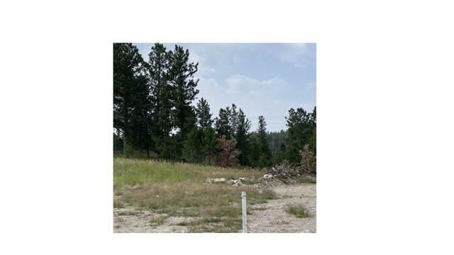 1020 Quinn Drive, Hill City, SD 57745 (MLS #69360) :: Black Hills SD Realty