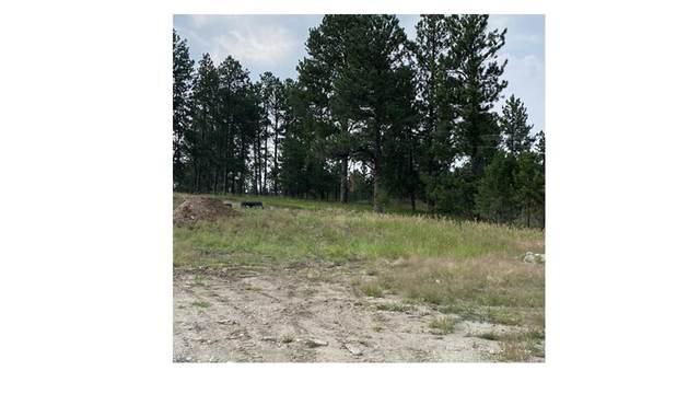 1024 Quinn Drive, Hill City, SD 57745 (MLS #69361) :: Black Hills SD Realty