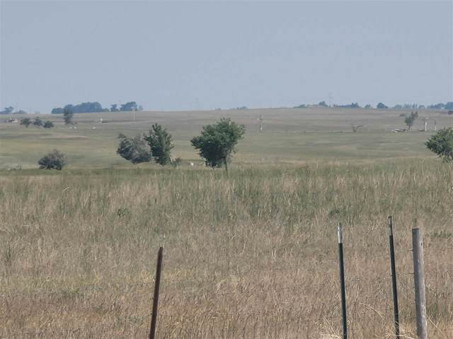 Address Not Published, Newell, SD 57760 (MLS #69386) :: Dupont Real Estate Inc.