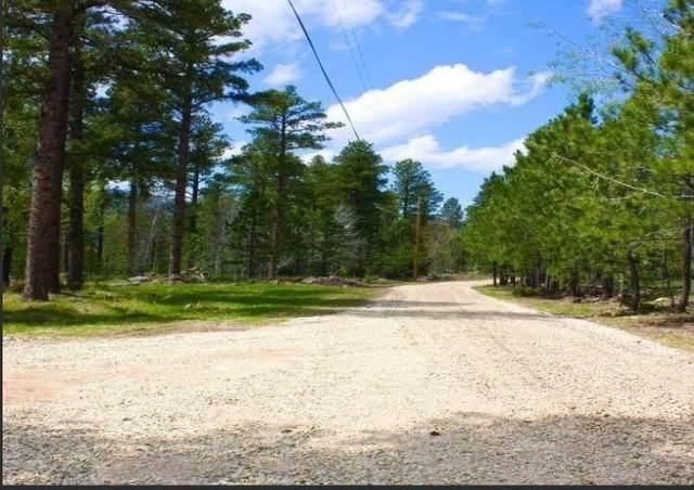 TBD Lot 27 Snowcat Road, Lead, SD 57754 (MLS #69409) :: VIP Properties