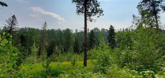 Summit Lode Cutting Mine Road, Lead, SD 57754 (MLS #69452) :: Christians Team Real Estate, Inc.