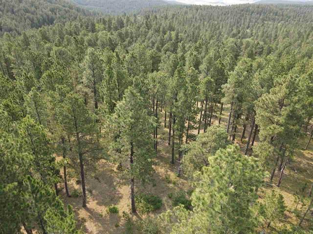 TBD Bear Lodge Ranch Road, Sundance, WY 82729 (MLS #69501) :: VIP Properties