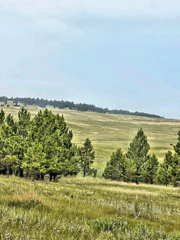 TBD Canyon Rim Ranch, Custer, SD 57730 (MLS #69596) :: Christians Team Real Estate, Inc.